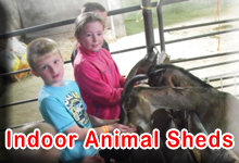 Indoor Animal Sheds